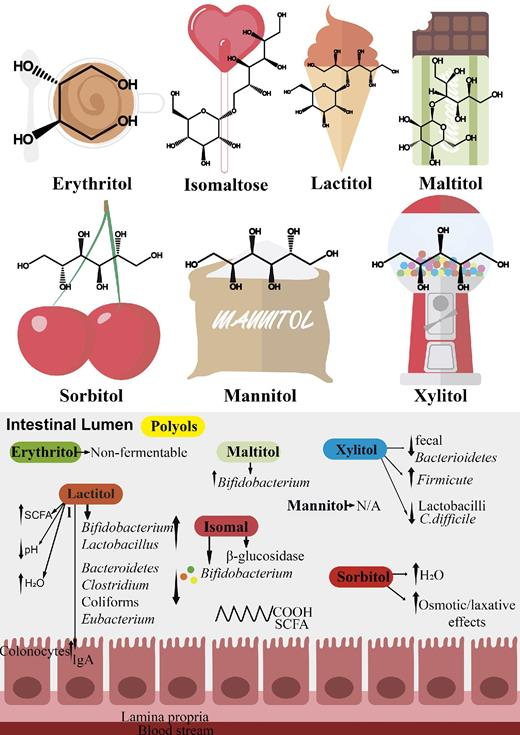 a infographic showing the structures of common sugar alcohols and their effects on different types of bacteria